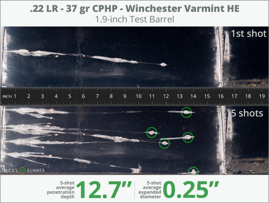 Image showing Winchester .22 Long Rifle (LR) 37 Grain rounds fired into ballistic gel
