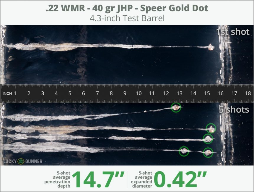 Image showing Speer .22 Magnum (WMR) 40 Grain rounds fired into ballistic gel