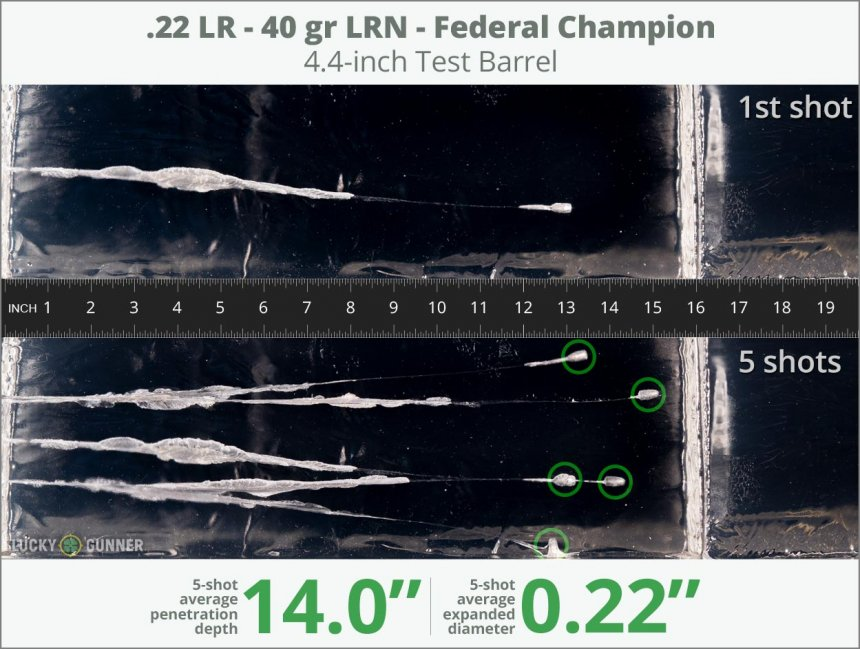 Image showing Federal .22 Long Rifle (LR) 40 Grain rounds fired into ballistic gel