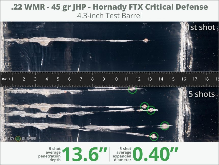 Image showing Hornady .22 Magnum (WMR) 45 Grain rounds fired into ballistic gel