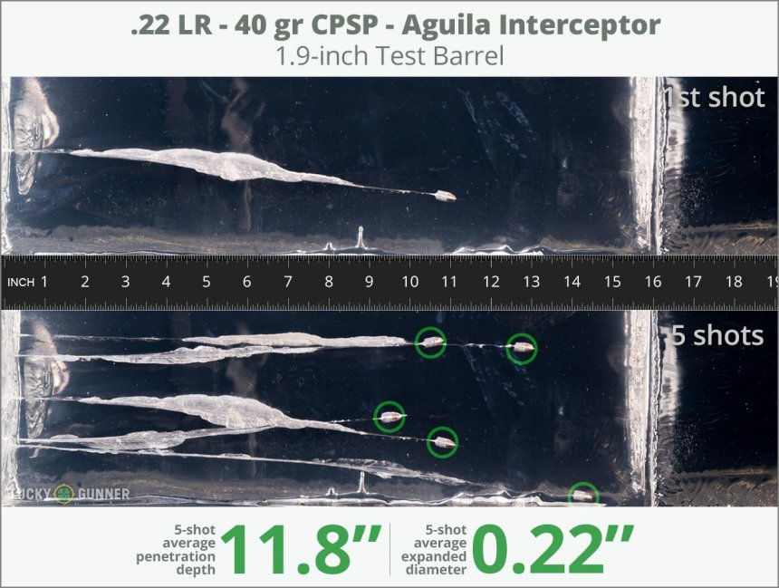 Image showing Aguila .22 Long Rifle (LR) 40 Grain rounds fired into ballistic gel