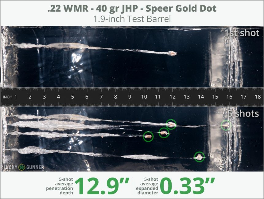 Image showing Speer .22 Magnum (WMR) 40 Grain rounds fired into ballistic gel