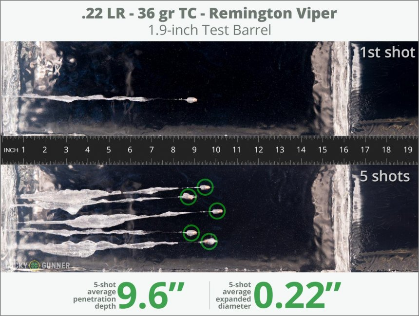 Image showing Remington .22 Long Rifle (LR) 36 Grain rounds fired into ballistic gel