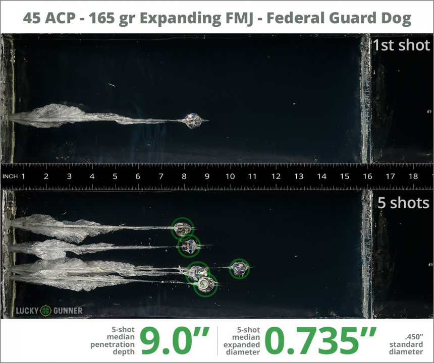 Image showing Federal .45 ACP (Auto) 165 Grain rounds fired into ballistic gel