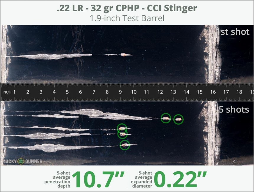 Image showing CCI .22 Long Rifle (LR) 32 Grain rounds fired into ballistic gel