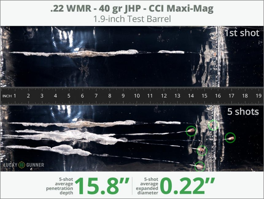 Image showing CCI .22 Magnum (WMR) 40 Grain rounds fired into ballistic gel