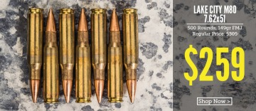 picture of lake city 7.62x51 ammo