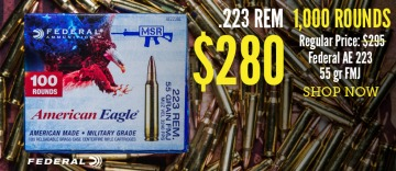 photo of federal american eagle 223 remington 1000 rounds