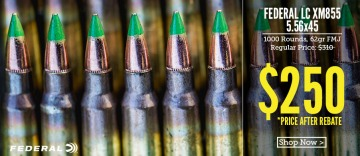 photo of 556 m855 ammo clips