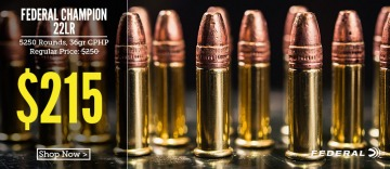 photo of Federal 22 LR Champion ammo