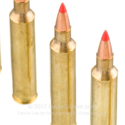 Image 5 of Hornady .204 Ruger Ammo