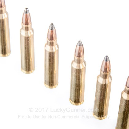 Image 5 of PMC .223 Remington Ammo