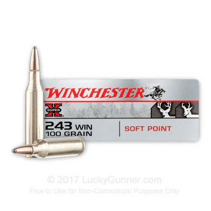 Image 1 of Winchester .243 Winchester Ammo