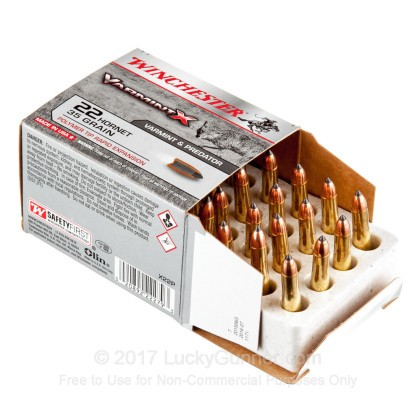 Image 3 of Winchester .22 Hornet Ammo