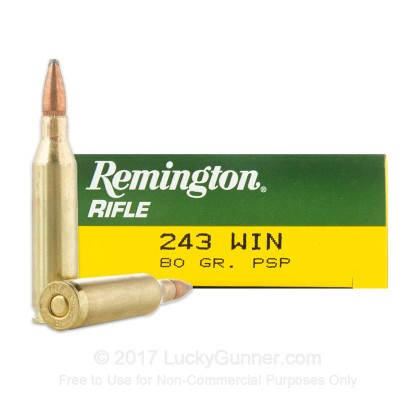 Image 1 of Remington .243 Winchester Ammo