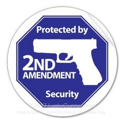 Large image of 2nd Amendment Stickers For Sale - Protected by 2nd Ammendment Security Octagon Sticker