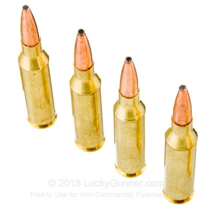 Image 5 of Federal .260 Remington Ammo