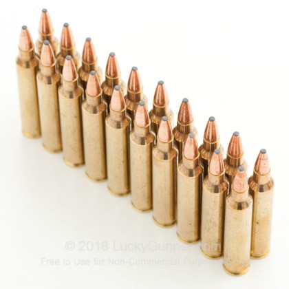 Image 9 of Hornady .204 Ruger Ammo