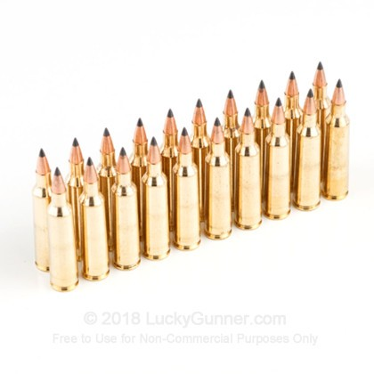 Image 5 of Winchester .22-250 Remington Ammo