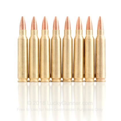 Image 2 of Golden Bear .223 Remington Ammo