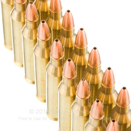 Large image of Premium243 Win Ammo For Sale - 55 Grain FBHP Ammunition in Stock by Nosler Varageddon - 20 Rounds