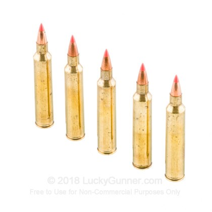 Image 4 of Fiocchi .204 Ruger Ammo