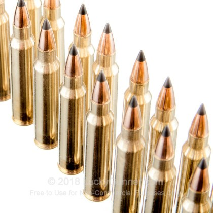 Image 5 of Winchester .223 Remington Ammo