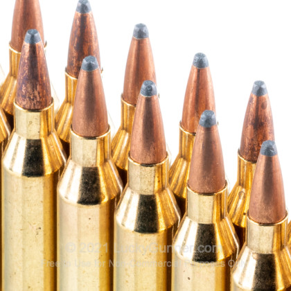Large image of Bulk 243 Win Ammo In Stock  - 70 gr Fiocchi PSP Ammunition For Sale Online - 200 Rounds