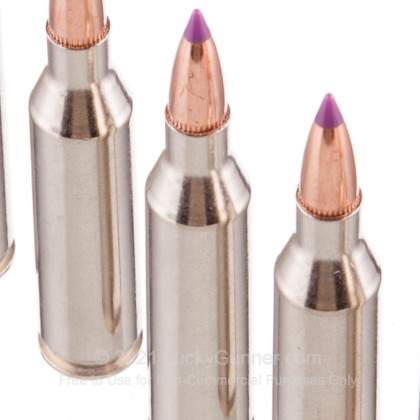 Large image of Premium 243 Ammo For Sale - 55 Grain Nosler Ballistic Tip Ammunition in Stock by Federal Vital-Shok - 20 Rounds