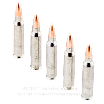 Image 4 of Silver Bear .223 Remington Ammo