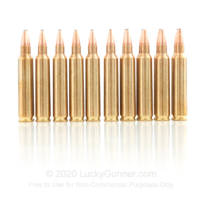 Image 8 of Hornady .204 Ruger Ammo