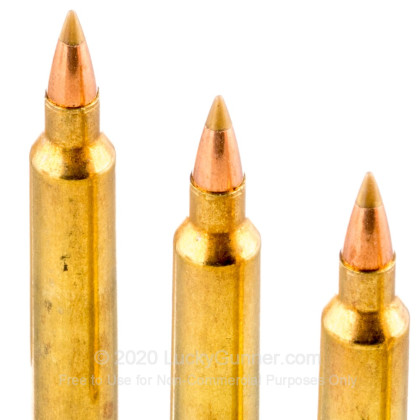 Image 5 of Remington .204 Ruger Ammo
