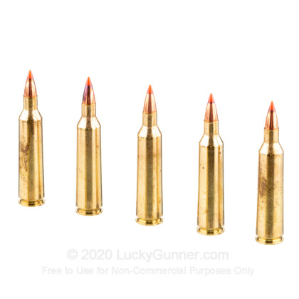 Image 4 of Fiocchi .22-250 Remington Ammo