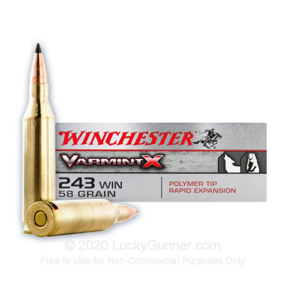 Large image of Premium 243 Win VarmintX Ammo For Sale - 58 grain Polymer Tipped Ammunition In Stock by Winchester - 40 Rounds