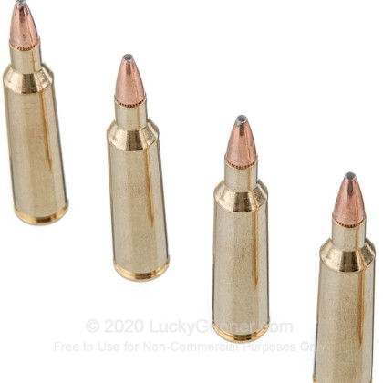 Image 5 of Federal .22-250 Remington Ammo