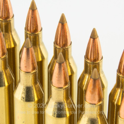 Large image of Premium 243 Win Varmint Ammo For Sale - 75 gr AccuTip Ammunition In Stock by Remington - 20 Rounds