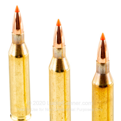 Large image of Premium 243 Win Ammo For Sale - 87 Grain V-Max Ammunition in Stock by Australian Outback - 20 Rounds