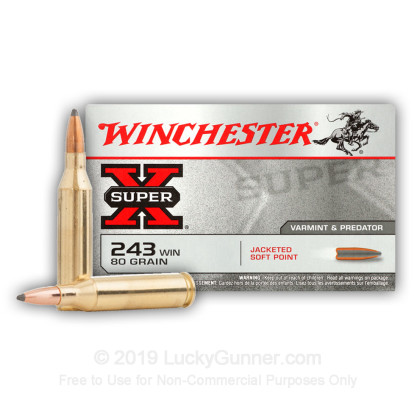 Large image of 243 Ammo For Sale - 80 gr SP - Winchester Super-X Ammo Online