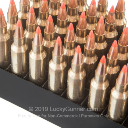 Image 5 of Fiocchi .204 Ruger Ammo