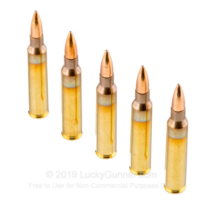 5 56x45 - 55 Grain FMJ-BT M193 - PMC - 1000 Rounds