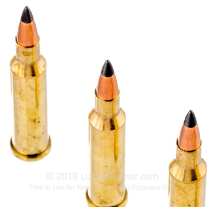 Image 5 of Winchester .17 Hornet Ammo