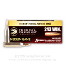 Premium 243 Win Ammo For Sale - 100 gr SPBT - Federal Premium Sierra GameKing Vital-Shok Ammo Online - 20 Rounds