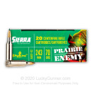 Premium 243 Ammo For Sale - 70 Grain BlitzKing Ammunition in Stock by Sierra Prairie Enemy - 20 Rounds