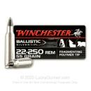 Premium 22-250 Ammo For Sale -  55 Grain Polymer Tip Ammunition in Stock Winchester Ballistic Silvertip - 20 Rounds