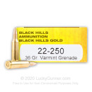 Premium 22-250 Ammo For Sale - 36 Grain Varmint Grenade HP Ammunition in Stock by Black Hills Gold - 20 Rounds