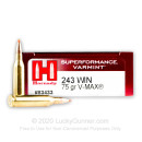 243 Win 75gr V-Max Ammo From Hornady Superformance Varmint For Sale Online - 20 rounds
