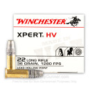 22 LR Ammo For Sale - 36 gr Lead Hollow Point Ammunition LHP - Winchester Xpert - 500 Rounds