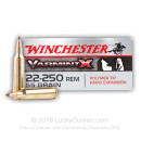 Cheap 22-250 Rem Winchester Ammo For Sale - 55 gr Polymer Tip Ammunition In Stock by Winchester Varmint-X - 20 Rounds