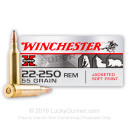 Cheap 22-250 Rem Winchester Ammo For Sale - 55 gr Soft Point Ammunition In Stock by Winchester Super-X - 20 Rounds