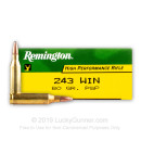 243 Ammo For Sale - 80 Grain PSP - Remington Rifle Ammo Online